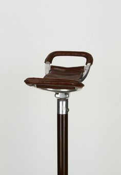 Walking stick with seat - Alloy, Cherry, Leather - Second - Catawiki Walking Stick With Seat, Walking Sticks And Canes, Folding Seat, Antique Shops, 19th Century, Cherry, Antiques, Leather, Antiquities