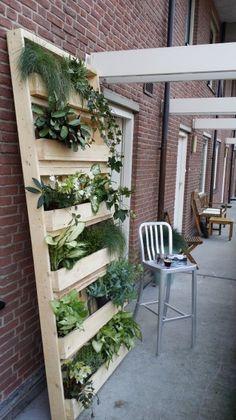 Tuin hangend aan de muur, gemaakt van de unieke popuppallets pallet.Handig, stoer en decoratief. voor balkon, muur of keuken. mooi met bloemen, groene klimplanten of keuken kruiden.