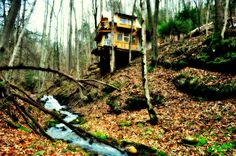green-mountain-treehouse-1;   I could live here so easily, right in the middle of the woods and a bonus stream!