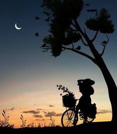 42 New Ideas For Wallpaper Paisagem Lua Silhouette Photography, Moon Photography, Silhouette Art, Beautiful Nature Wallpaper, Beautiful Moon, Shadow Pictures, Art Pictures, Cute Wallpapers, Wallpaper Backgrounds