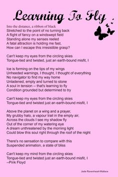 Learning To Fly - Pink Floyd Lyrics ☮ * ° ♥ ˚ℒℴѵℯ cjf Learn To Fly Lyrics, Music Is Life, My Music, Pink Floyd Lyrics, Comfortably Numb, David Gilmour, Everything Pink, Lyric Quotes, Tv Quotes