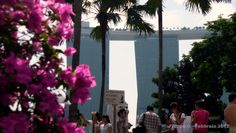 from Merlion Park