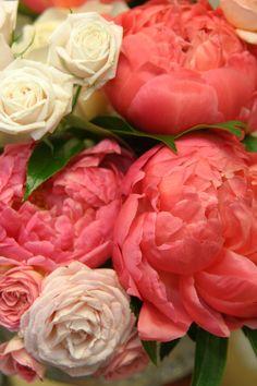 Impressive peonies and spray garden roses.