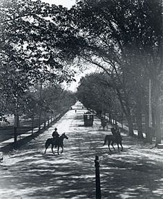 Horses and streetcars on State Street