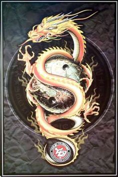 Chinese Golden Dragon - Picture and Story