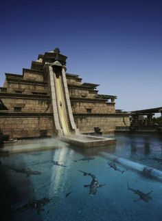 Leap Of Faith - Atlantis, Dubai.. Did the one in Atlantis, Bahamas! @Renata Nall #dubai #uae