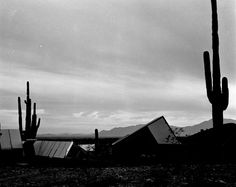 Ocatilla Deset Camp, 1929.  Frank Lloyd Wright designed this camp for his draftsmen using the desert landscape as inspiration.  With sharp angled canvas roofs, Wright wanted the buildings of the camp to appear as a fleet of sails on the desert landscape.  #FrankLloydWright #Chandler
