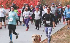 Check out these trail races during your next race-cation! Trail Races, Running Magazine, Running Women, Bucket, Racing, Urban, Check, Running, Auto Racing
