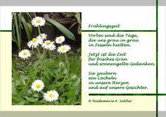 Frühlingszeit erweckt die Lebensgeister. Fotopoesie - Gedicht und Gänseblümchen  #daisies #Gänsebluemchen #Fruehling #Fruehlingszeit #Motivation #Lebensfreude #Fotopoesie