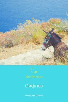 Сифнос - особый остров Киклад  с традиционной архитектурой и прекрасными пляжами -  исключительное место для отпуска - а местная кухня просто замечательна!!!