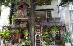 都会の真ん中のツリーハウスに登ってみよう! | Find my Tokyo. | 東京メトロ