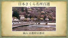 【(Japan)日本さくら名所百選】嵐山(京都府京都市)[Beautiful cherry blossoms in Japan]