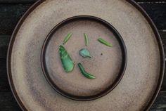 succulents, peacful ranch, ceramic