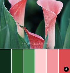 a calla-lily-inspired color palette