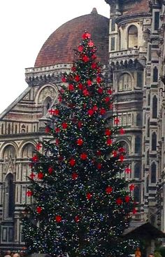 Christmas tree at the Duomo in Florence, Italy - Christmas 2013