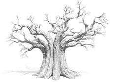 Faceted Baobab Tree, illustration : by Disko Ferdi Dick Tree Of Life Art, Baobab Tree, Tree Sketches, Tree Artwork, Copper Art, Tree Illustration, Tree Sculpture, Native Art, Bonsai