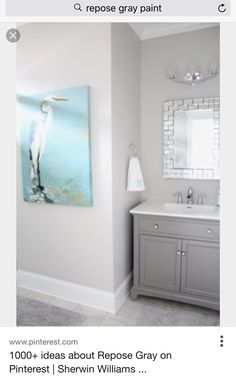 Repose Gray Sherman Williams. Ideas For BathroomsBathroom IdeasCalming  ColorsSmall ...