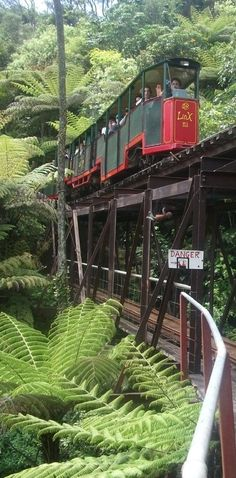 Travel Inspiration for New Zealand - Driving Creek Railway - Coromandel Peninsula, North Island, NZ - New Zealand North, New Zealand Travel, Trains, South Island, Train Travel, Places To See, Travel Inspiration, The Good Place, Beautiful Places