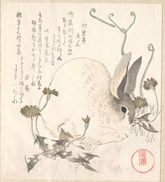 Kubo Shunman ~ Hare and Dandelion, ca. 1820  ||  Metropolitan Museum of Art
