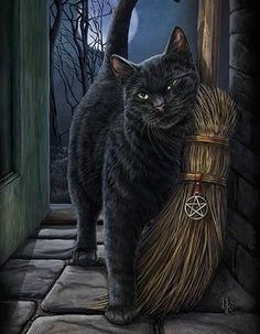 Brush With Magick Black Cat Canvas Mounted Art Print. Features a gorgeous black cat with broom (besom), Full Moon, and Pentacle. Beautiful Artwork by UK Artist