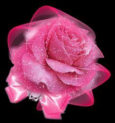 2118 Mejores Imágenes De Flores Y Rosas Pink Flowers Flowers Y