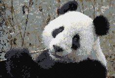 Panda cross stitch pattern, free from cross-stitch-pattern.net