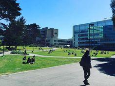 17. San Francisco State University — San Francisco, California