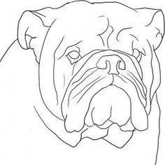 how to draw an english bulldog step 8 how to draw an english bulldog step. The post how to draw an english bulldog step 8 appeared first on Travers Rottweilers. Bulldogs, Bulldog Drawing, Arte Country, Online Drawing, Pitbull Terrier, Easy Drawings, Animal Drawings, Pet Portraits, Painting Inspiration