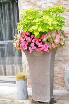 Unique jardin balcon Hook-type suspendu fleur plante pot panier jardiniere porte-C