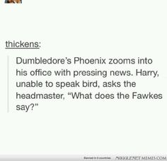 """""""What does the Fawkes say?"""" Harry Potter and Dumbledore"""