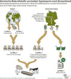 #Infographic about #biofuels and #soy
