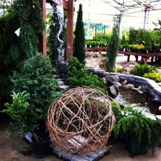 Zen Garden...ohmm...