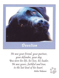 Sympathy Card for loss of Dog by inspiremetoday on Etsy, $3.50