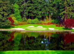 11th hole at the Seattle Golf Club - Beauty 'Reigns'...