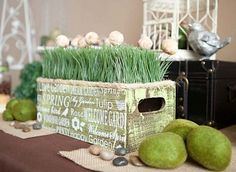 donut holes display party-ideas