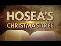 Let the Christmas Trees Rejoice - 119 Ministries - YouTube