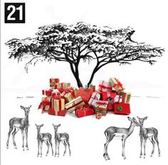 21st December - Its time to start putting presents under your tree! #juliettraversadventcalendar #presents #gifts #christmas #acaciatree