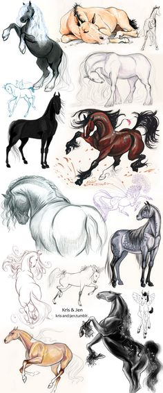 by jen-and-kris on deviantART, horse art equine painting Horse Drawings, Animal Drawings, Cute Drawings, Animal Sketches, Drawing Sketches, Drawing Ideas, Sketching, Horse Sketch, Equine Art