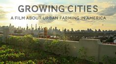 Growing Cities -- trailer for upcoming documentary about urban agriculture, and how it is revitalizing cities one animal, vegetable, and chicken at a time.