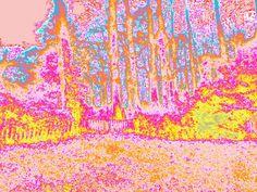backyard psychedelic bright