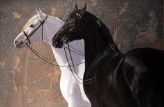Jaime Corum - New Editions Gallery, Lexington, KY All The Pretty Horses, Beautiful Horses, Unicorn Tapestries, Horse Artwork, Black Horses, Horse Drawings, Equine Art, Horse Love, Animal Paintings