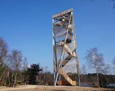 observation tower by ateliereen architecten overlooks pine nature reserve in belgium