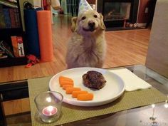 A very happy birthday pup! :D