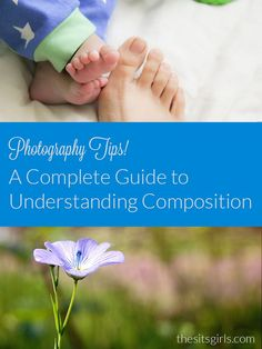 Photography Tips: A Complete Guide To Composition And Perspective   Learn how to take better pictures by setting up the shot with interesting composition.
