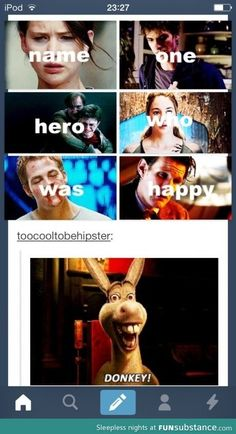"Me-""Okay.......I'm trying to think of a happy hero besides Donkey an I can't....."""