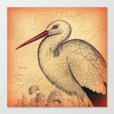 Pretty Stork Canvas