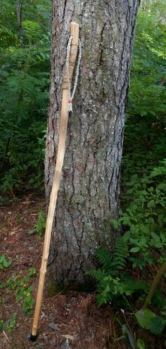 Walking stick with Natural finish Maine Made by bearpawrustics