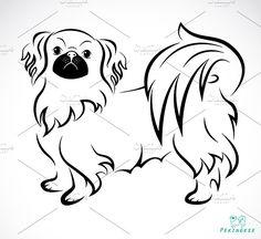 Illustration about Vector image of an Dog (Pekingese) on white background. Illustration of hair, design, beautiful - 32414106 Dog Vector, Free Vector Art, Chinese Dog, Pekingese Dogs, Arte Tribal, Dog Silhouette, Outline Drawings, Cartoon Pics, Doge