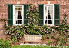 Deck the Walls (and Hedges) I love to see roses growing on brick. I haven't been able to master Fire Pit Backyard, Backyard Patio, Backyard Ideas, Small Gardens, Outdoor Gardens, Dream Garden, Home And Garden, Landscaping With Roses, Landscaping Ideas
