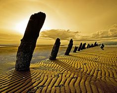 Iona Beach, Richmond, BC, Canada Shadowpiles by Chris Morley Beauty Planet, Nature Landscape, Hospitality Design, Our Planet, How Beautiful, Beautiful Beach, Beautiful Places, Nature Photos, British Columbia